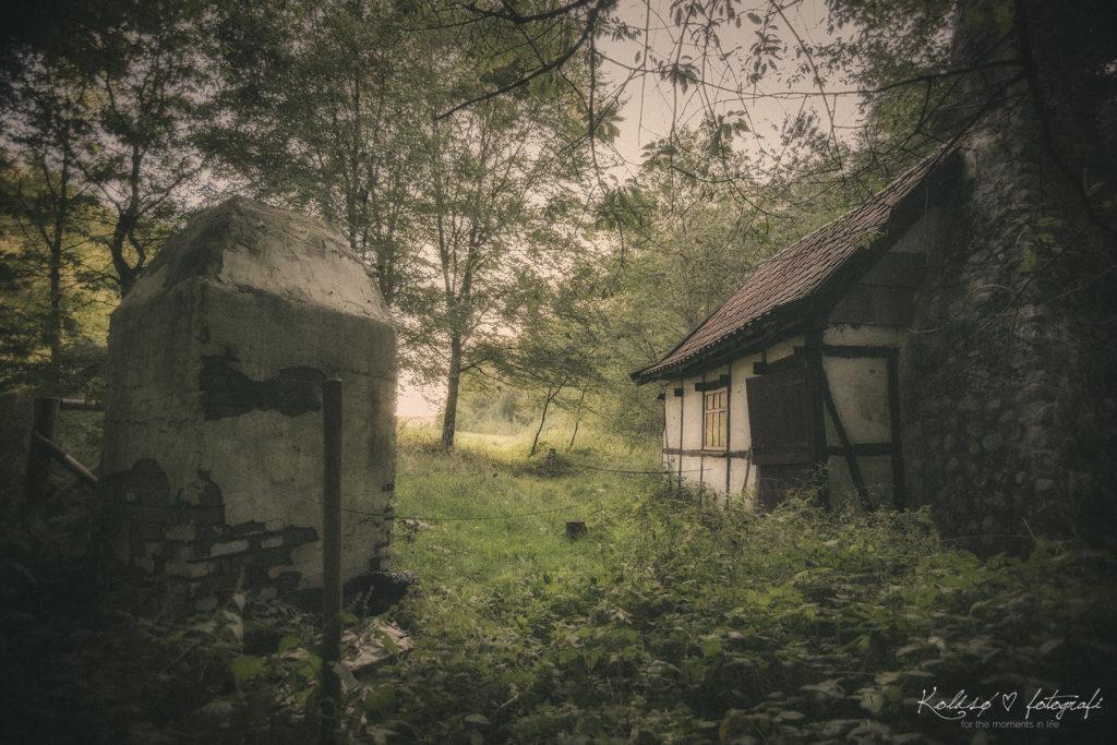 retouchering af kunstværk hos Koldsø Fotografi, ved fotograf Chanett Koldsø